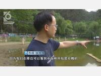 民定党支部书记张涛律师勇救落水儿童获点赞
